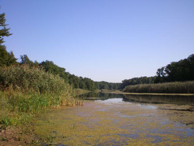 фото озер подпесочное